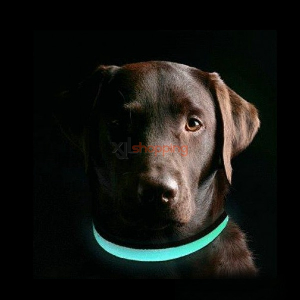 Led Flash Luminous Pet Dog Cat Collar Luminous Dog Collar