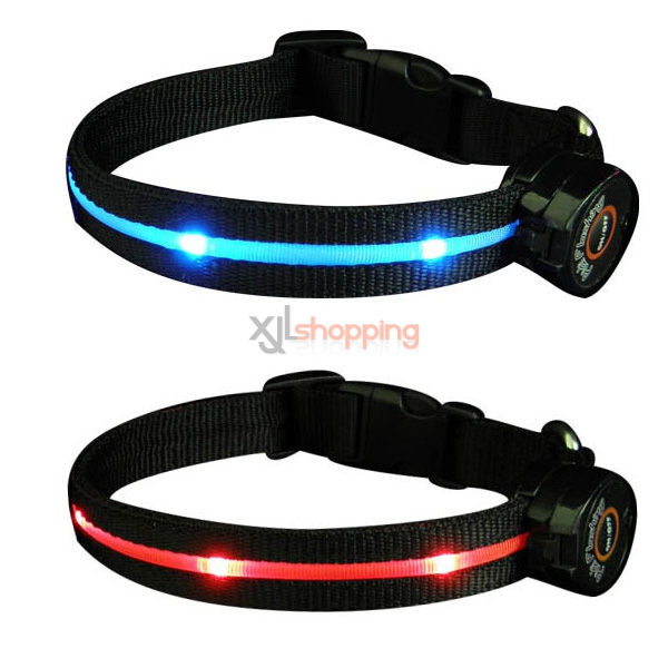 LED light dog collar medium-sized dogs and cats reflective luminous golden Samoyed dog collar collar